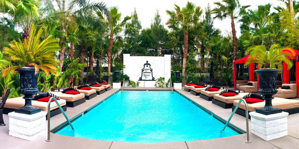 Best Topless Pools In Las Vegas Discotech The 1